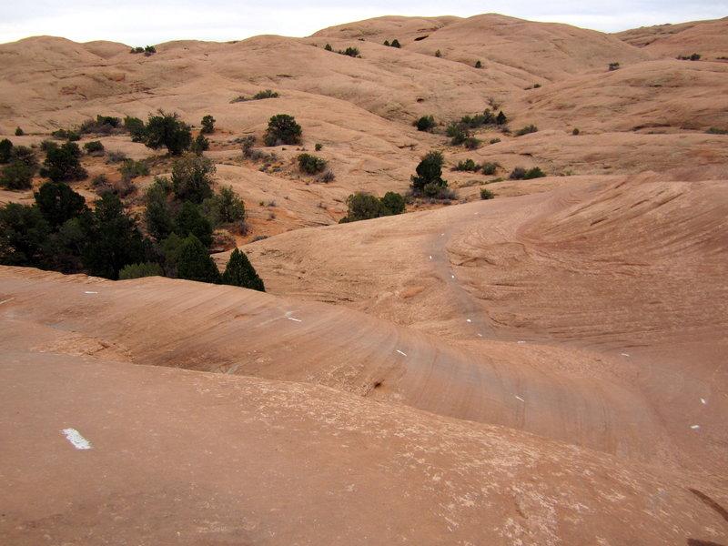 Sandstone switchbacks. Tight turns on the Slickrock Trail.