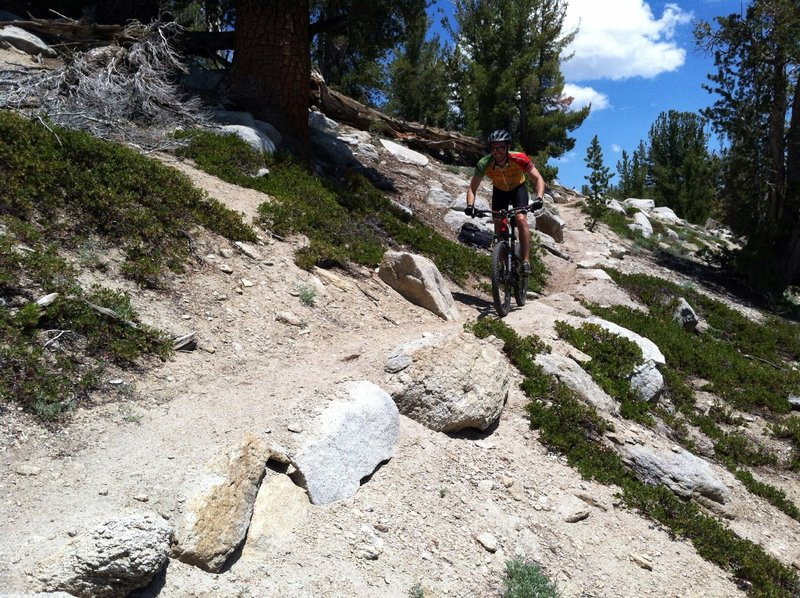Fun stuff on the Tahoe Rim Trail