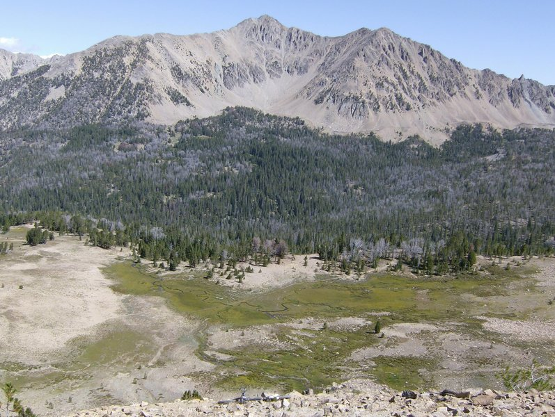 Top of the ridge looking into Antz Basin. Spread My Ashes Here!