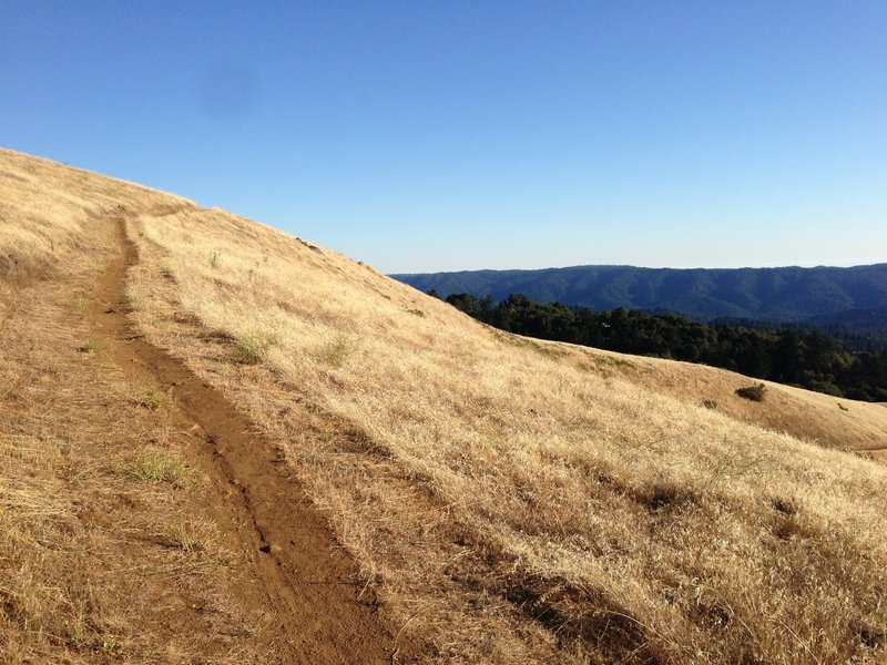 Russian Ridge, Ridge Trail