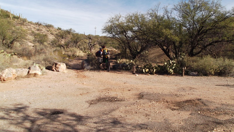 In Colossal Cave Park