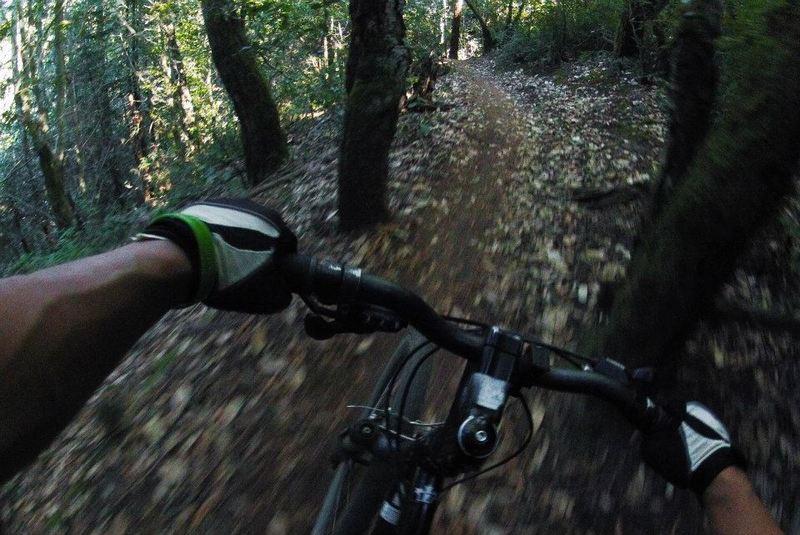 Riding through awesome singletracks!