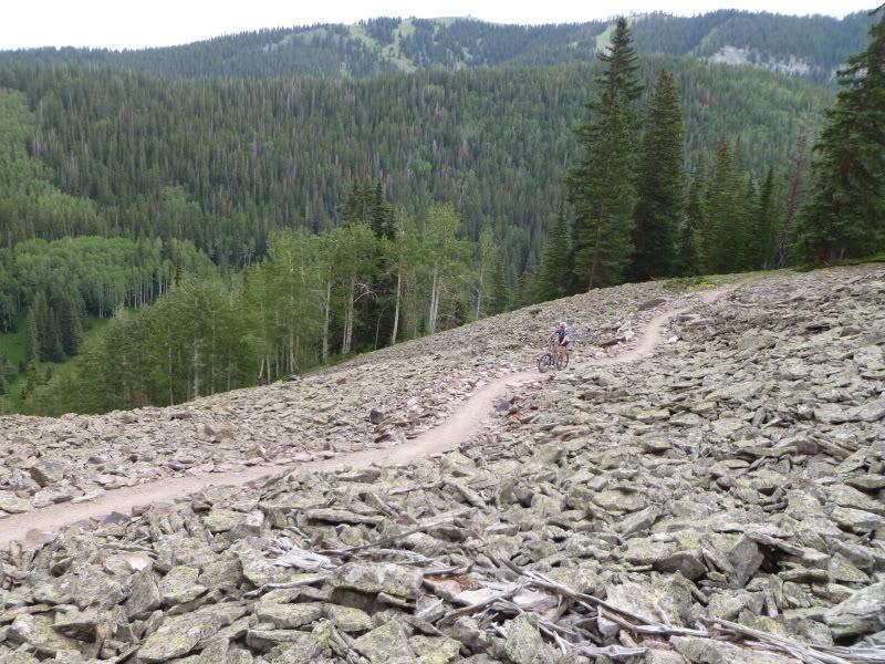 Tallus/Rockslide in summer.