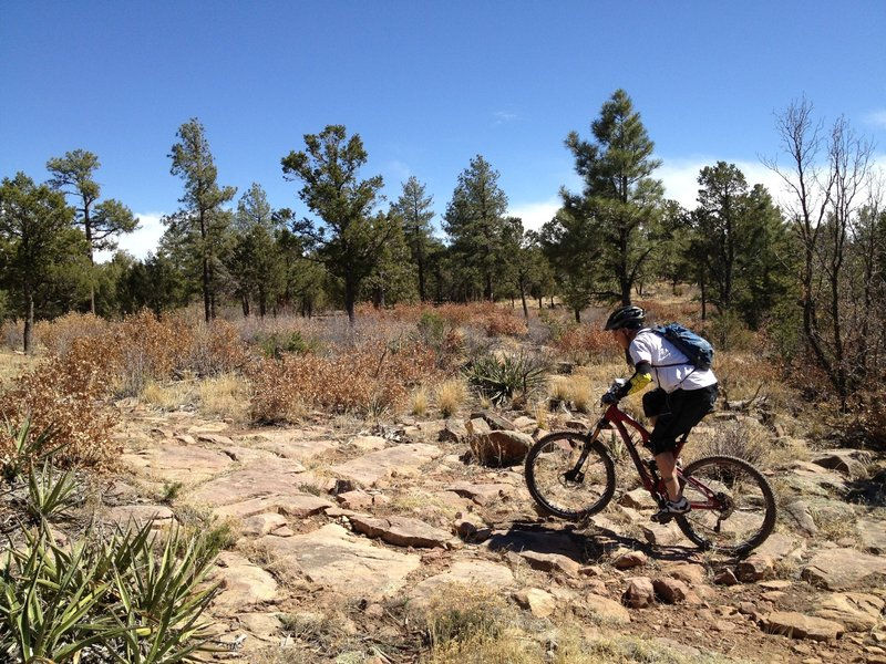 Rocky challenges on FS Rd 106