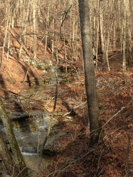Early Spring with water in the creeks