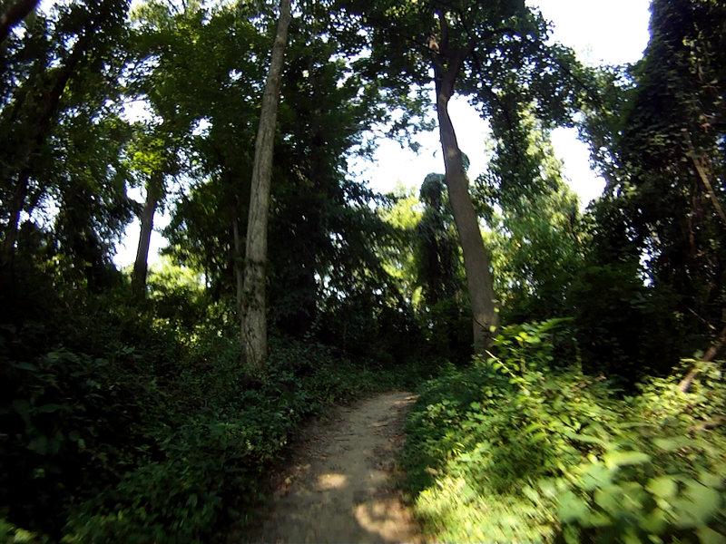 Whitley Farm Trail