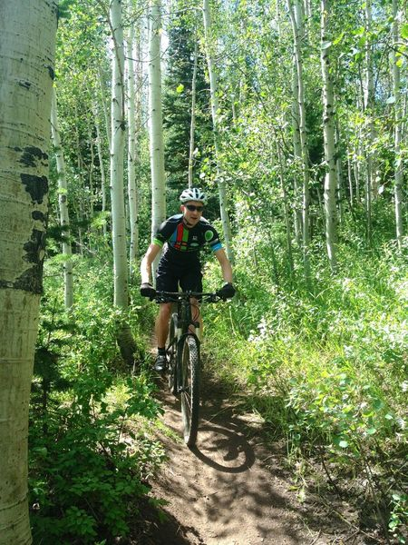 Cruising the aspens between ski runs