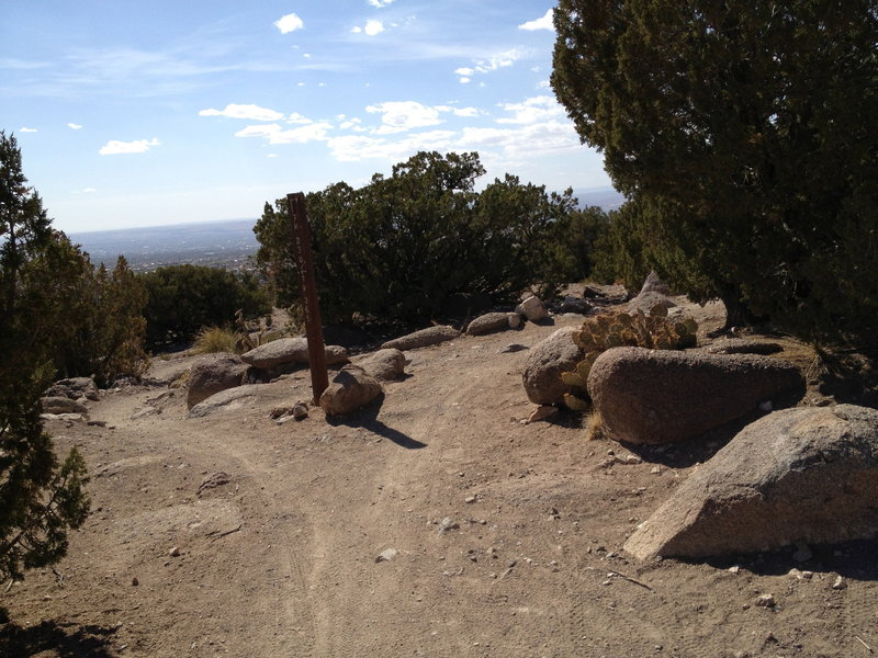 """The trail split, behind you is south on Foothills Trail 365, while left is the extension to the water tower and right would take you UP the """"Rocky DH"""" on Trail 230."""