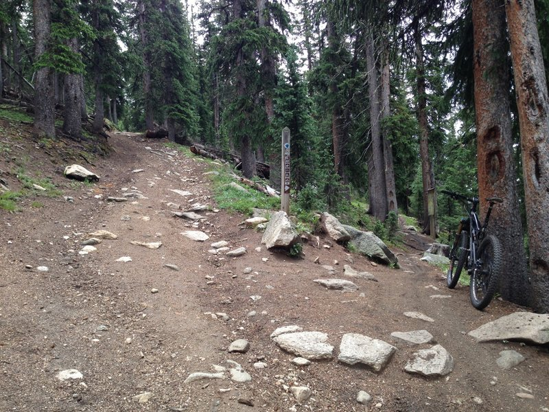 And take this singletrack trail off to the right
