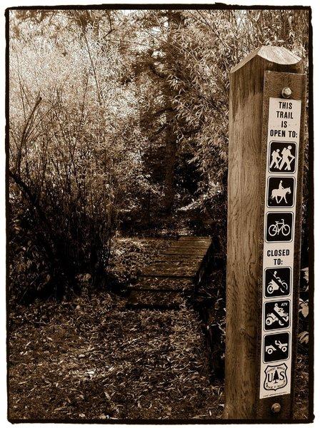 Lower Trailhead for Starvation Creek Trail
