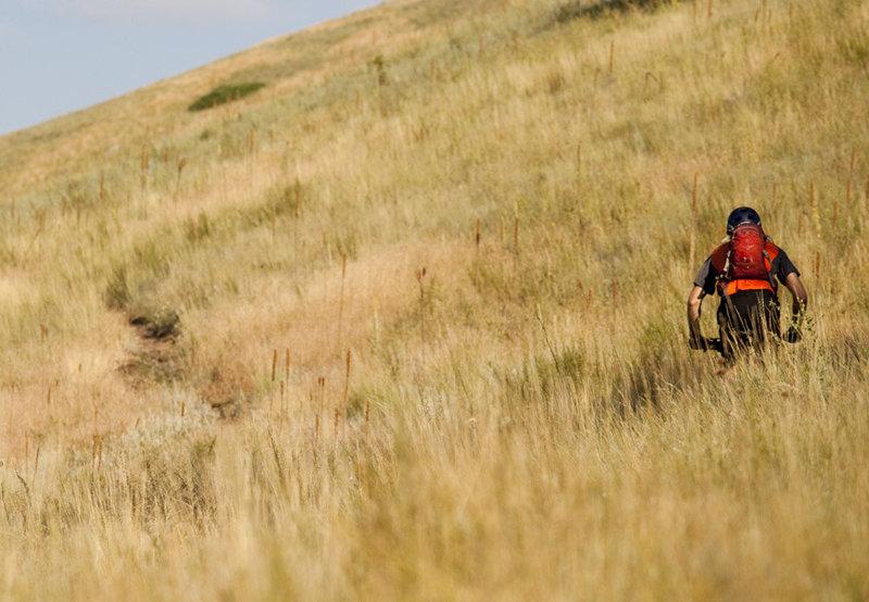 The initial climb up the Mt Helena Ridge trail.