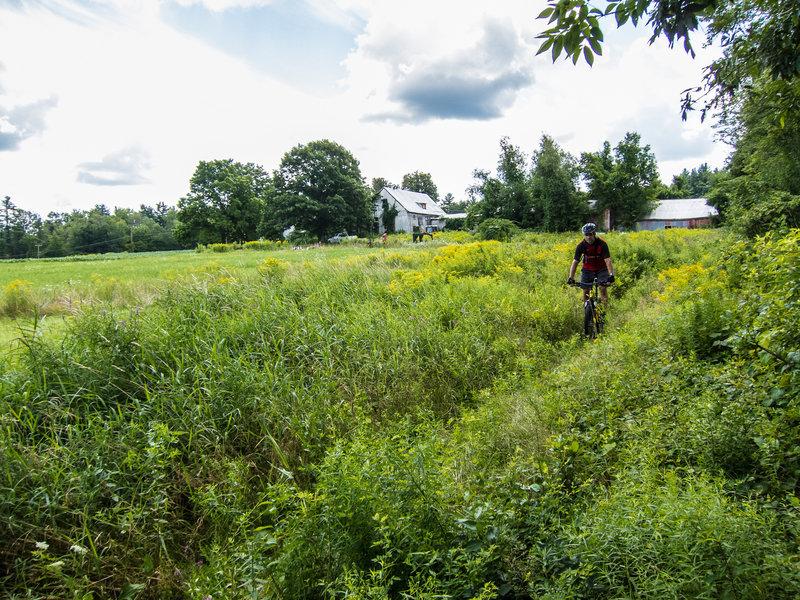 Enjoying the southern New Hampshire countryside on Beaver Brook Association land.