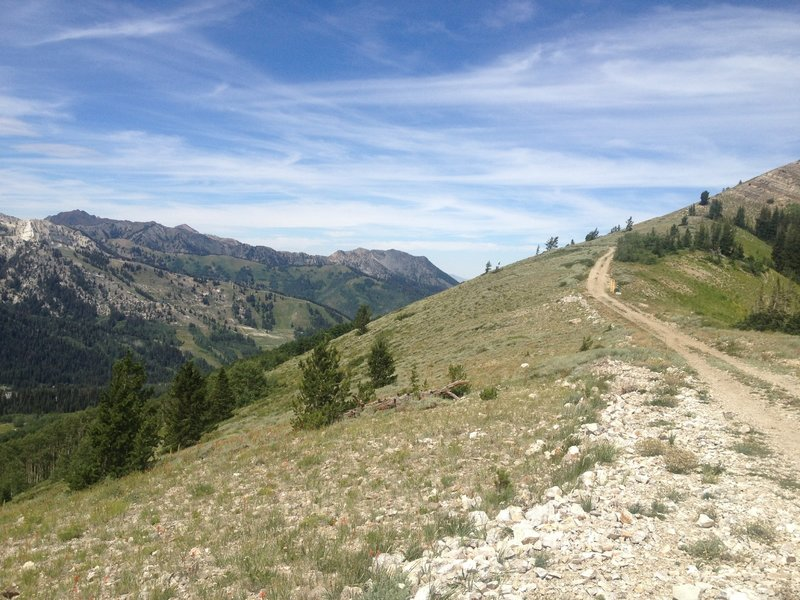 Looking west at the Wasatch Crest trail from the top of Puke Hill