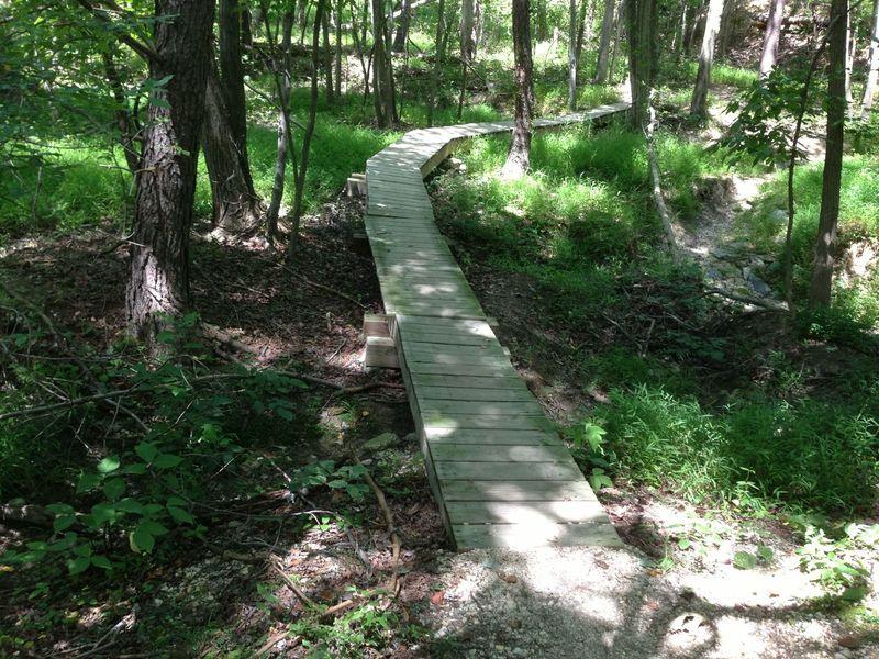 Narrow bridge on Crow's Foot trail