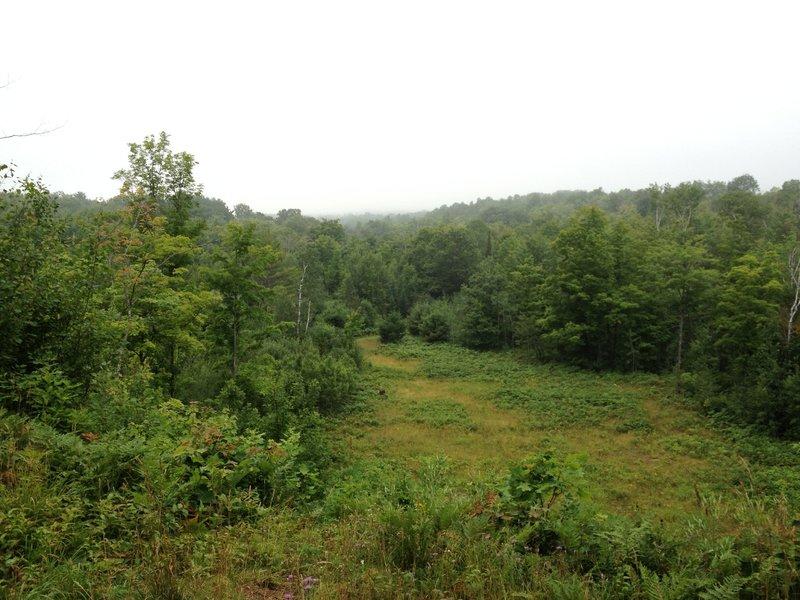 Pilgrim River valley overlook on Hillside Trail.