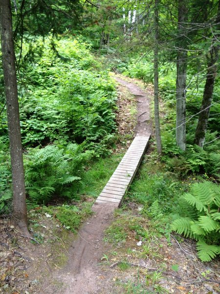 Another narrow crossing on Hillside Trail.