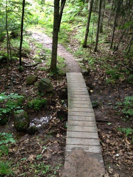 Gently curving bridge on Hillside Trail.