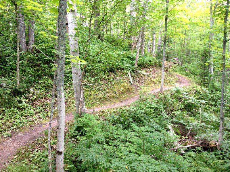 Rolling bench segment on Hillside Trail.