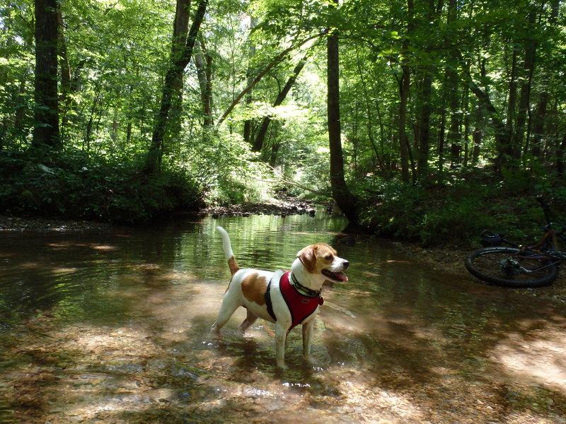 Furnace Creek