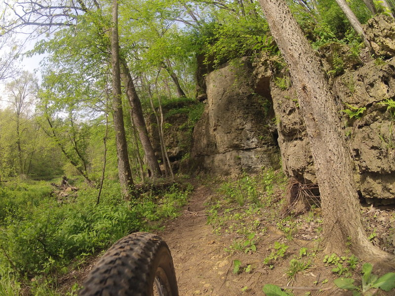 Limestone bluffs along the Snake Trail. The trail runs along a small creek at the bottom of the trail