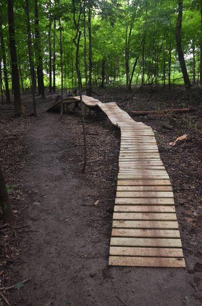 This is a bridge feature built using a fallen tree. It's  nearly 2 feet wide, and 3 feet tall.