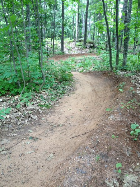 Part of a berm run on a steeper hillside section of Twilight Zone Loop.