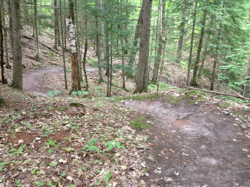 A series of natural berms, courtesy of Mother Nature, as you swing down a small valley on Inner Peace Loop.