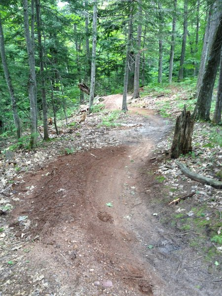 Some small berms on Inner Peace Loop.