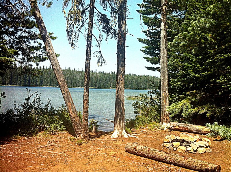 Remote campsite on Deer Lake