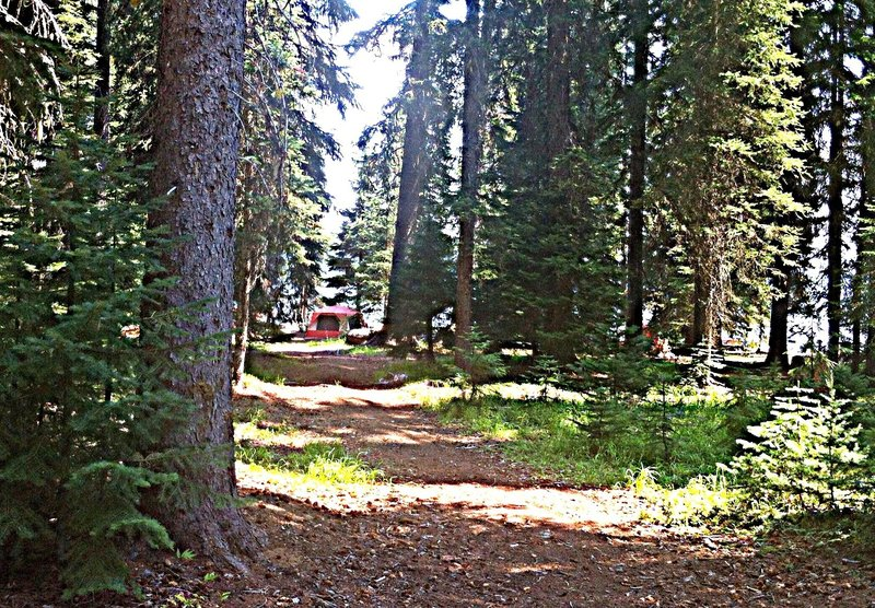 Campsites on the remote west end of Cultus Lake