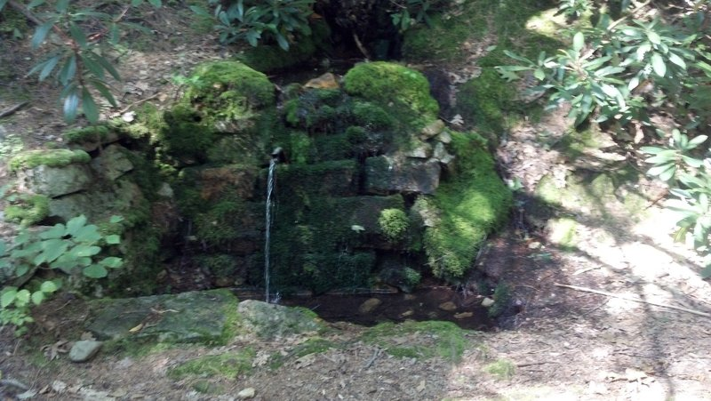 Detweiler spring, there are two of these springs very close to each other, great for filling up the camelback for an epic ride.