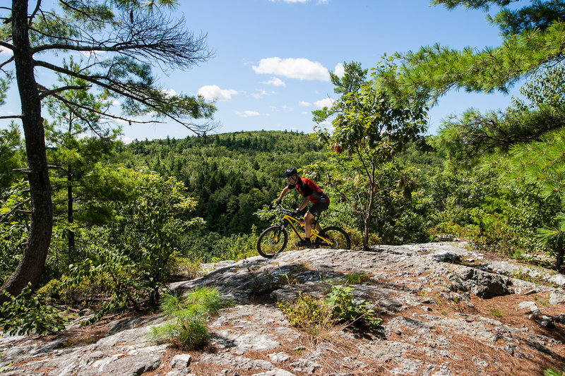 Rider navigating the outcrop on Hall Mountain singlerack.