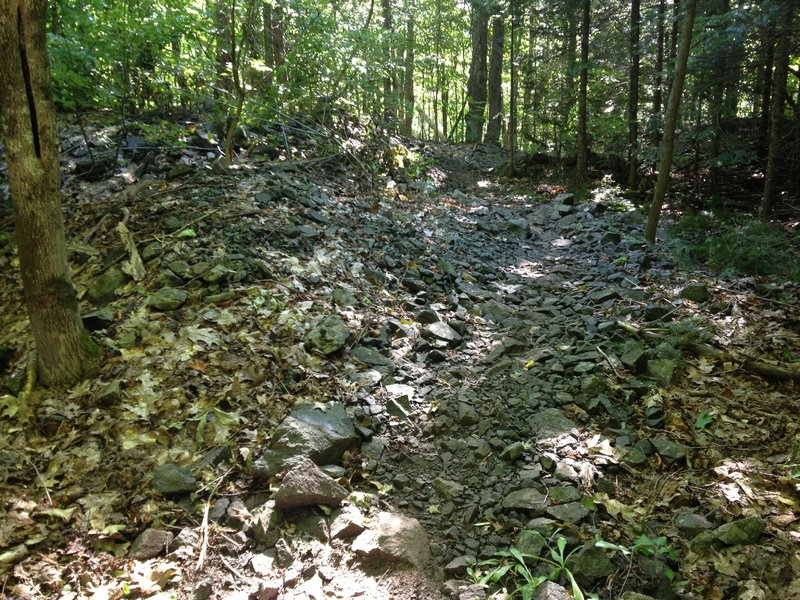 Crossing a poor rock pile from copper mining days on Hairy Toad Loop.