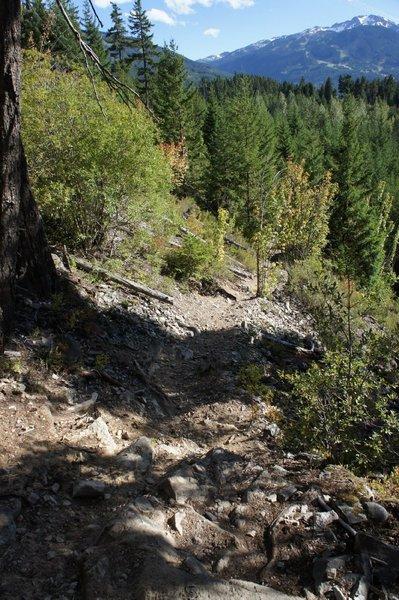 Technical downhill stretch