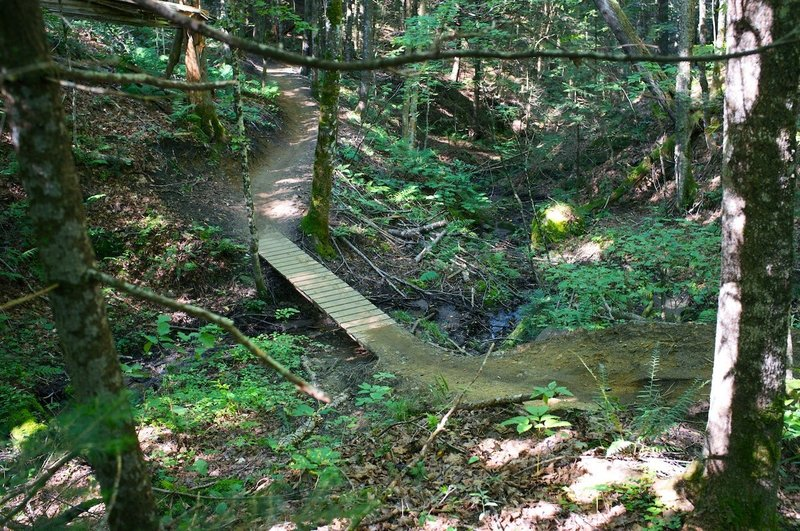 Nice Bridge on 'Troll Stroll'