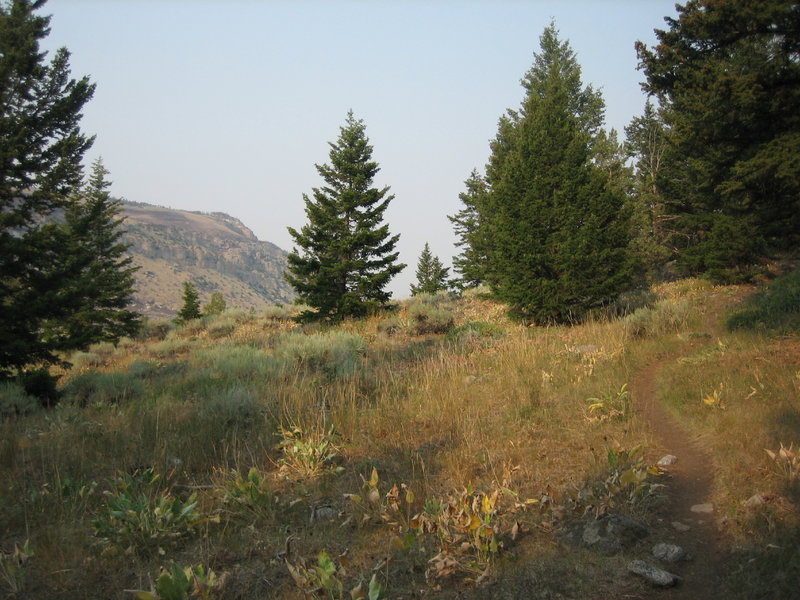 Heading up the sage draw trail.