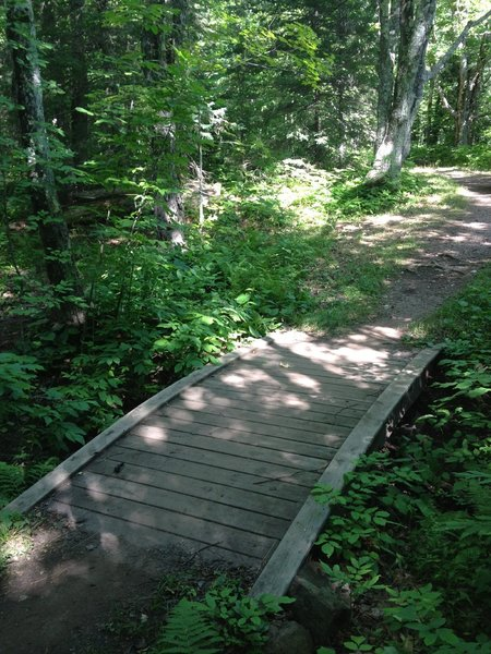 Arched bridge on Ring Loop at Michigan Tech's Tolkien Trails.