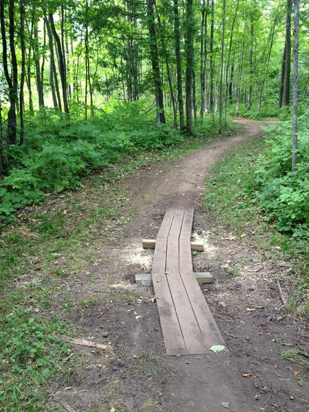 Curved boardwalk on Ring Loop at Tech's Tolkien Trails.