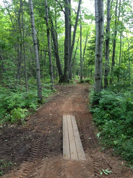 New boardwalk and trail improvements on back side of Gnome Loop at Michigan Tech's Tolkien Trails.