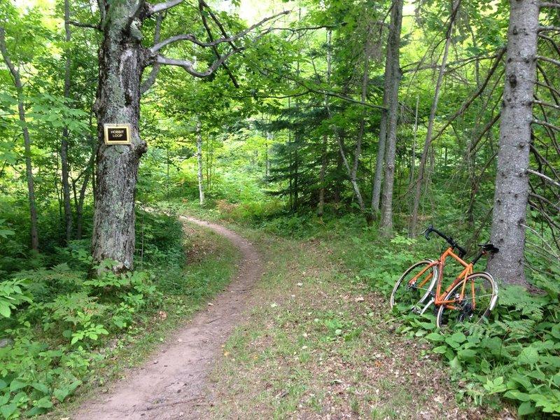 Hobbit Loop at Michigan Tech's Tolkien Trails.