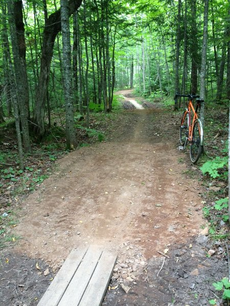 Series of ground level boardwalks and turns on Troll Loop at Michigan Tech's Tolkien Trails.