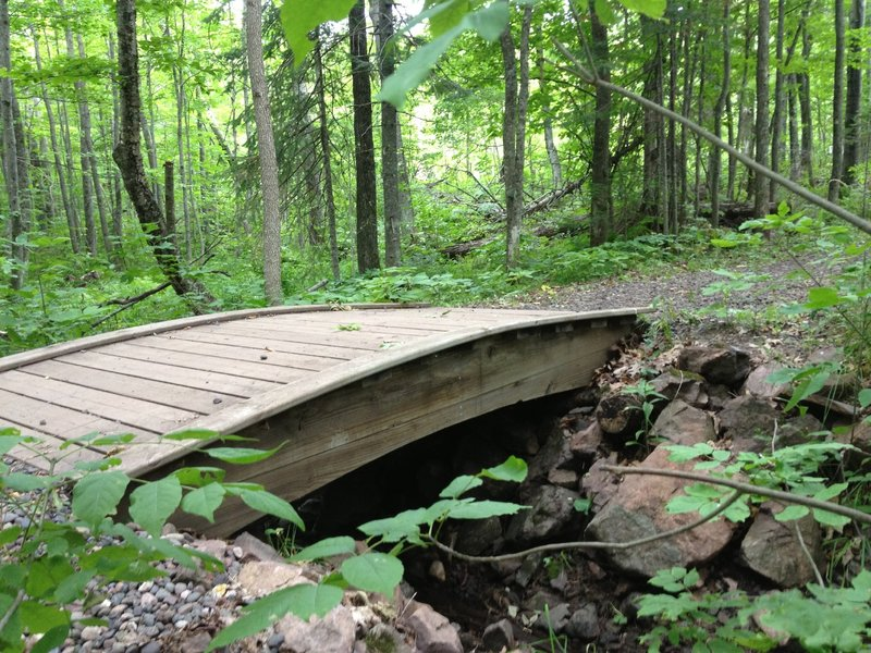 An arched bridge shared by Dragon and Troll Loops over the headwaters of Deadman's Creek at Michigan Tech Trails.