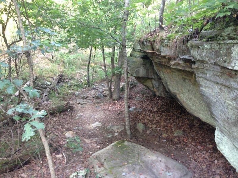 Dry creek bed under an overhang