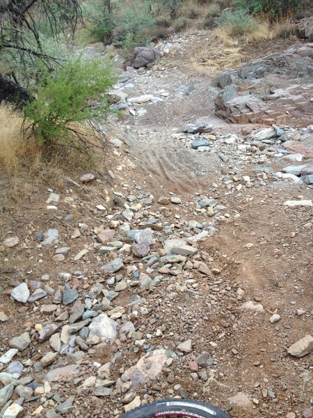 Coming out of wash into Cave Creek Park. The rest of the trail to Cave Creek is in good condition.