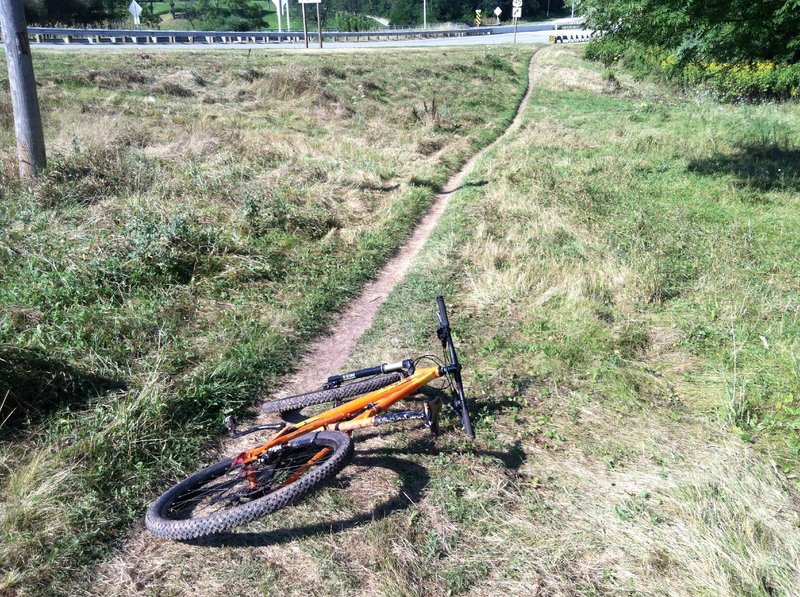 Initial singletrack route to trail