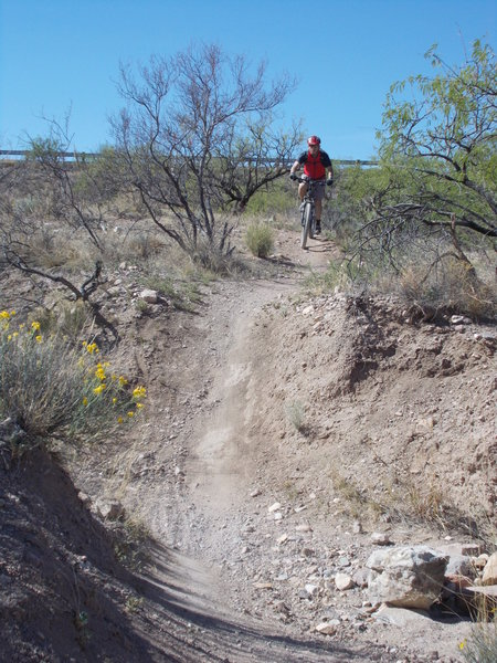Little dip in the trail