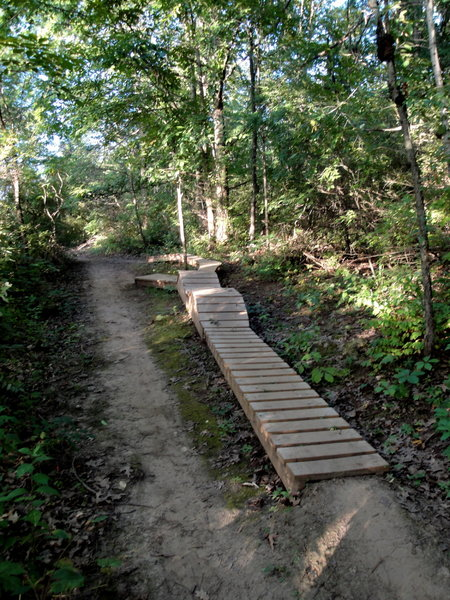40' wooden trail feature.