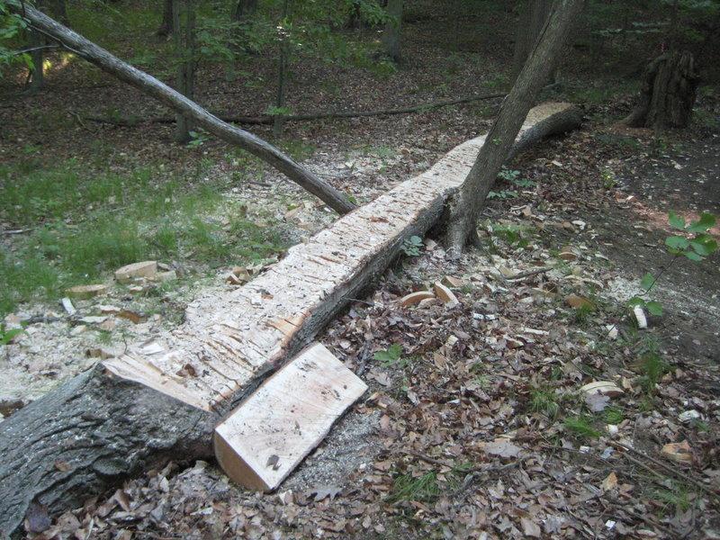 log skinnies