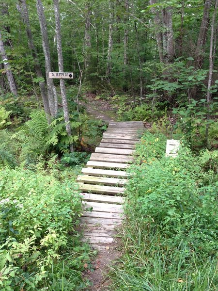 """The """"Troll Bridge"""" - on the Tempest trail at Camden Snowbowl, next to where it hits 22 Tacks Trail."""