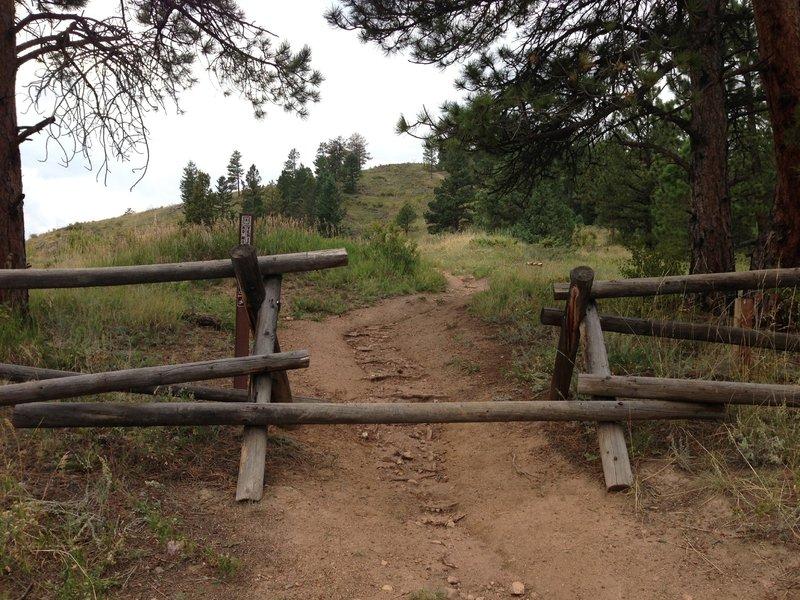 Winiger Ridge Trailhead on Boulder County Road 359.